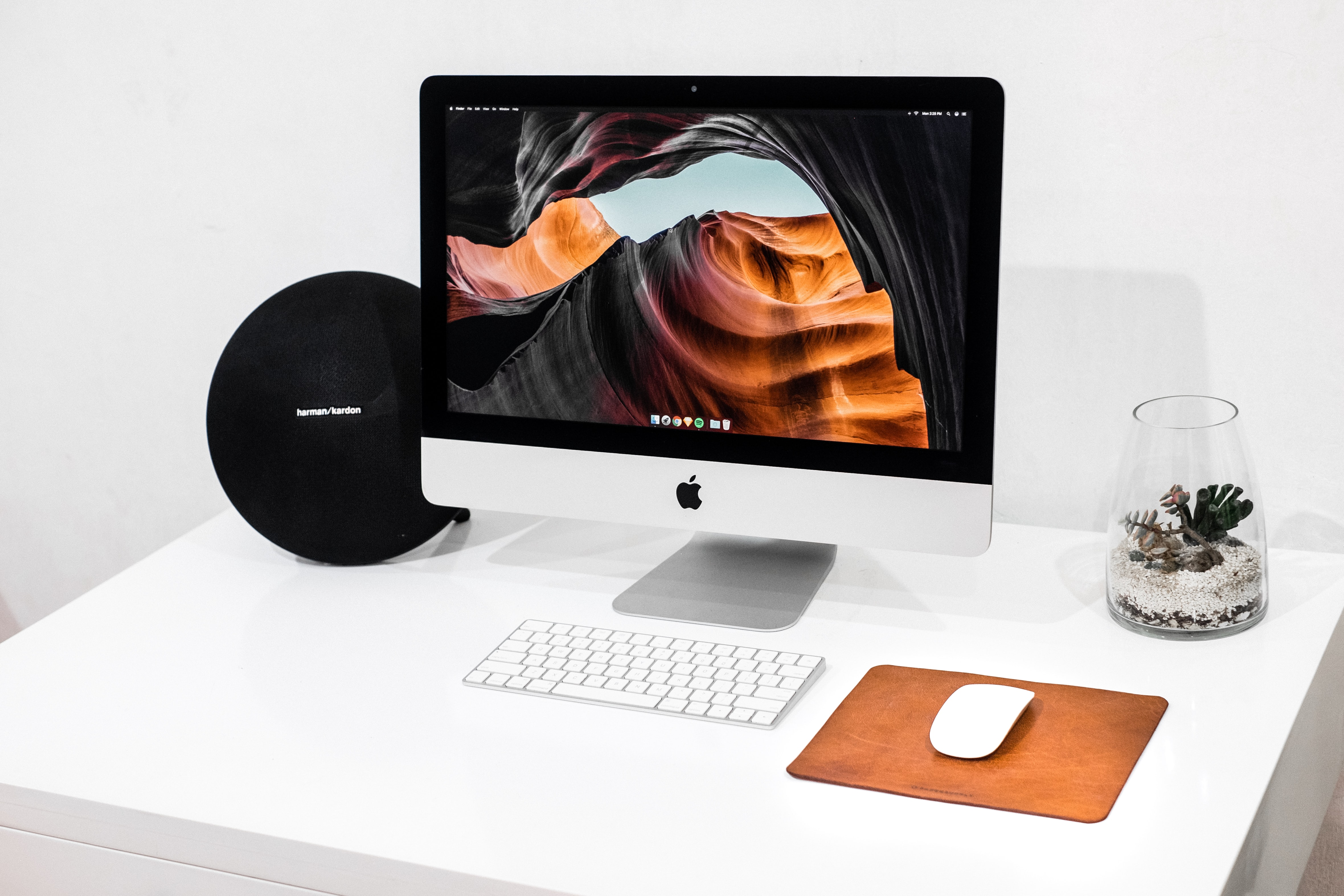 Computer and Teleconferencing Accessories